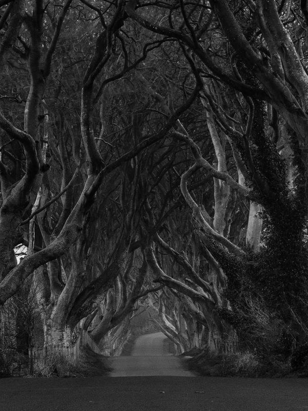 Kings road, Atrim, Northern Ireland,Galeria krajobrazowa, krajobrazy